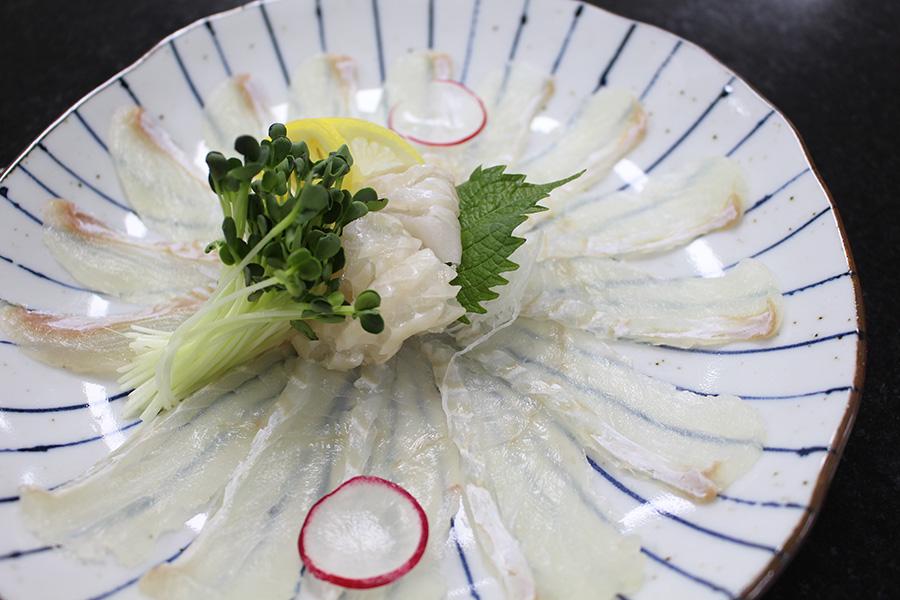광어사시미 & 초밥